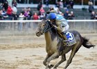 Joking wins the Vosburgh Stakes