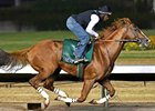 California Chrome Works for BC at Los Al