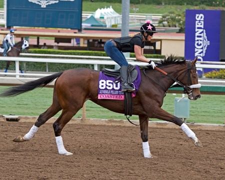 Coasted, Juvenile Fillies Turf Works at Santa Anita in preparation for 2016 Breeders' Cup on Oct. 29 2016, in Arcadia, CA.
