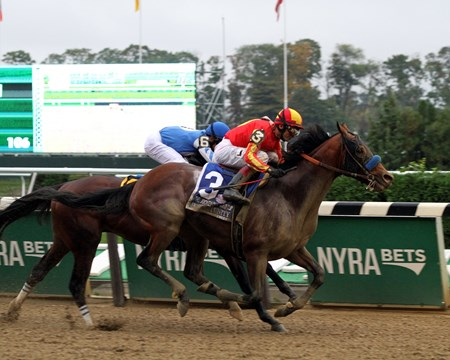 Hoppertunity with John Velazquez win the 98th Running of the Jockey Club Gold Cup at Belmont Park on October 8, 2016.