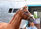 California Chrome and groom Raul Rodriguez arrive at Santa Anita