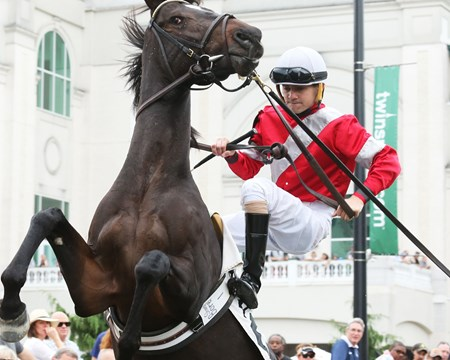 McCraken wins the 2016 Street Sense Stakes at Churchill Downs