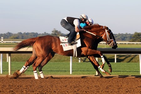 Dolphus (outside) works during the, 2016 Keeneland  Fall Meet