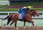 Accelerate works at Santa Anita Park Oct. 29