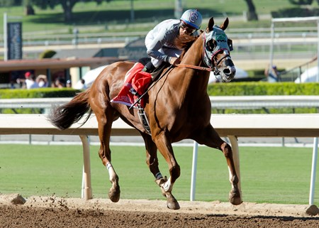 California Chrome wins the 2016 Awesome Again Stakes