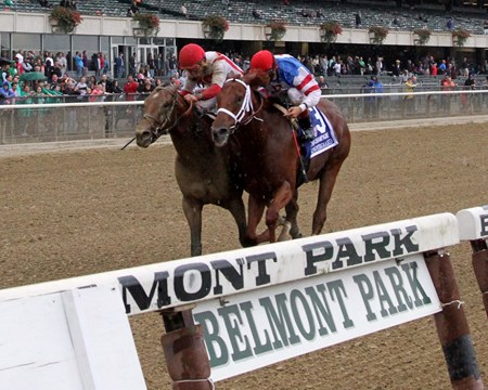 Practical Joke (#1) with Joel Rosario win the 145th Running of The Champagne (GI) over Syndergaard (#3) with John Velazquez at Belmont Park on October 8, 2016.