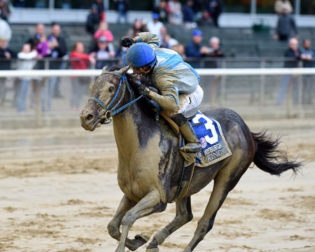 Joking wins the 2016 Vosburgh Stakes.