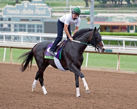 Tourist