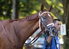Curalina before the 2015 Coaching Club American Oaks (gr. I)