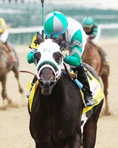 Warrior's Club won the first Spendthrift Juvenile Stallion Stakes in 2016 at Churchill Downs.