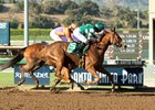 Stellar Wind wins the 2016 Zenyatta Stakes
