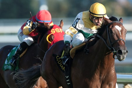 Tiz a Slam wins the 2016 Cup and Saucer Stakes
