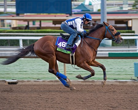 Vyjack, Mile.
