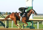 I'm a Chatterbox breezes Oct. 29 at Keeneland.
