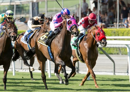 Ashleyluvssugar and jockey Gary Stevens win the 2016 John Henry Turf Championship