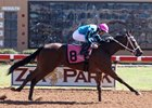 Fastinating Allie wins a maiden race at Zia Park Oct. 24
