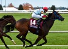 Mongolian Saturday wins the 2015 TwinSpires Breeders' Cup Turf Sprint