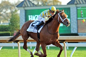 Noble Bird wins the 2016 Hagyard Fayette Stakes