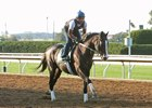 Tourist works at Keeneland Oct. 22