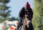 Dartmouth Represents the Queen at Woodbine