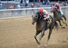 Stallwalkin' Dude Headlines Fall Highweight