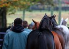 Fasig-Tipton October