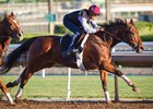 Beholder worked five furlongs in :59 1/5.