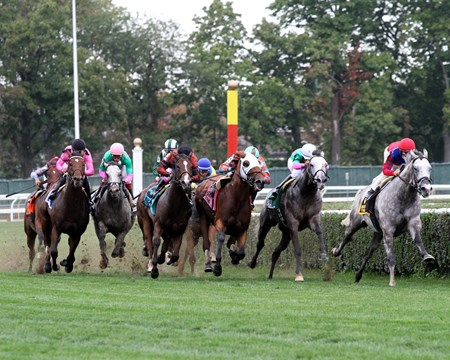 Horses come off the final turn in the 1st Running of The Belmont Turf Sprint Invitational at Belmont Park on October 8, 2016 won by Pure Sensation (#5) with Kendrick Carmouche.