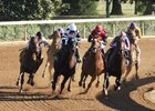 A. P. Indian (red cap) rounds the turn for home on his way to win the Phoenix at Keeneland