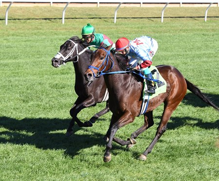 Mongolian Saturday (#12) holds on to win the Woodford