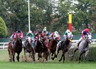 The New York Racing Association hopes to encourage the development of horses for long-distance turf stakes