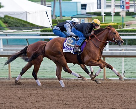 Accelerate, Dirt Mile