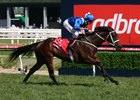 Winx wins the 2016 Caulfield Stakes