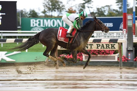 Bar of Gold wins the Empire Distaff Stakes at Belmont Park on October 22, 2016.