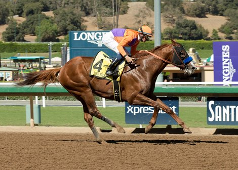 Lord Nelson Strikes Again At Santa Anita Bloodhorse