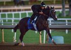 Songbird works at Santa Anita Oct. 20