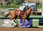 California Chrome rolls to victory in the Awesome Again