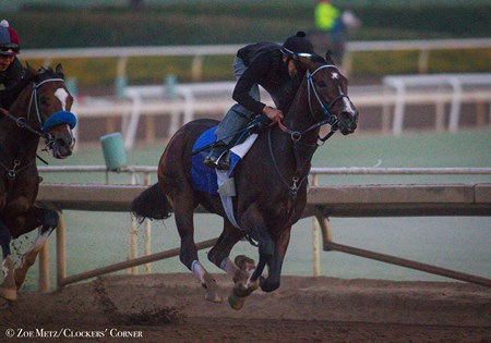 Songbird - Santa Anita, October 13, 2016