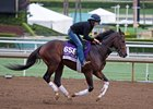 Texas Chrome Aiming for Oaklawn Handicap