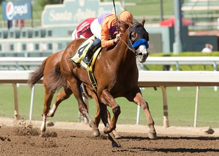 Lord Nelson wins the 2016 Santa Anita Sprint Championship