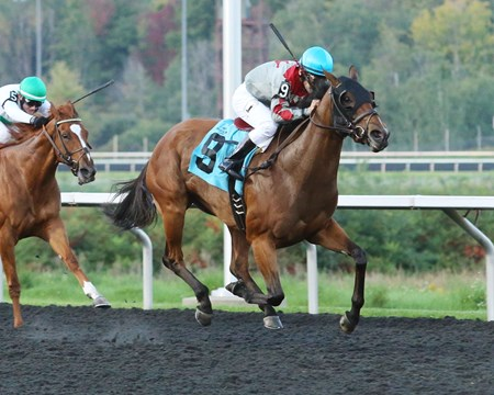 Minks Aprise wins the 2016 H.B.P.A. Stakes