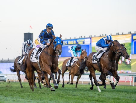 Buffering wins the Al Quoz Sprint at Meydan Racecourse on March 26, 2016.