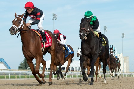 Generous Touch wins the 2016 Ruling Angel Stakes at Woodbine Racetrack.