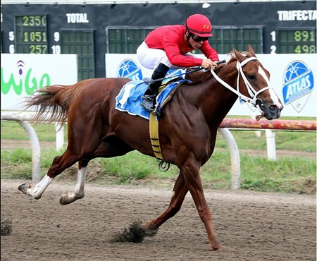 Steps to Heaven becomes To Honor and Serve's first black-type stakes winner Oct. 2 at Presidente Remon racetrack in Panama