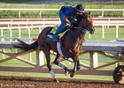 Nyquist working at Santa Anita Park Oct. 7