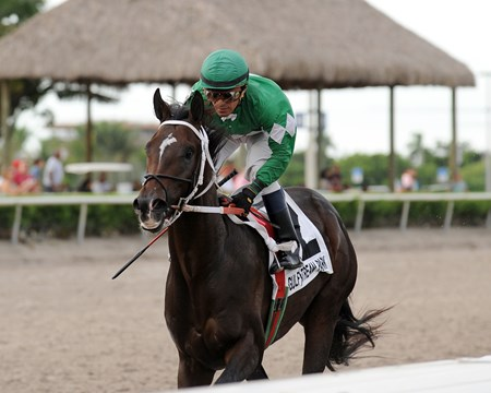 Three Rules wins the Florida Sire In Reality Division