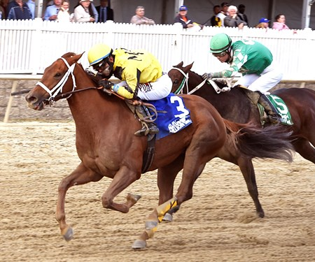 Rockin Jojo wins the 2016 Maryland Million Distaff Handicap