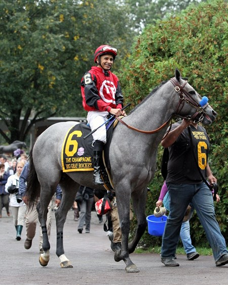 Big Gray Rocket with Mike Smith heading to the track for the 145th Running of The Champagne (GI) at Belmont Park on October 8, 2016.