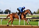 I'm a Chatterbox breezes Oct. 4 at Keeneland.