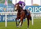 Minding wins The Queen Elizabeth II Stakes Ascot 15 Oct 2016